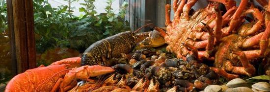 """马德里超赞""""海鲜馆""""推荐,吃货还不进来看!"""
