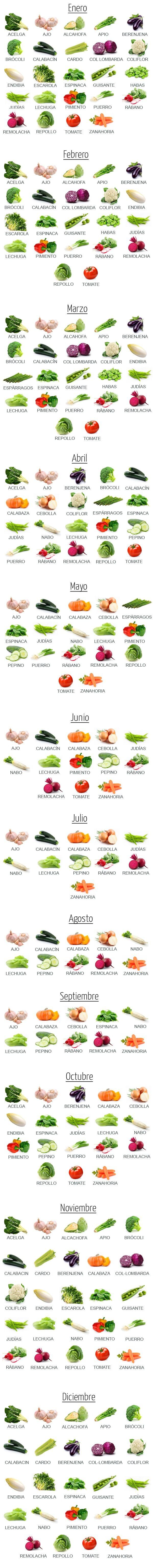 西班牙蔬菜日历,西班牙蔬菜单词,每月份出什么蔬菜