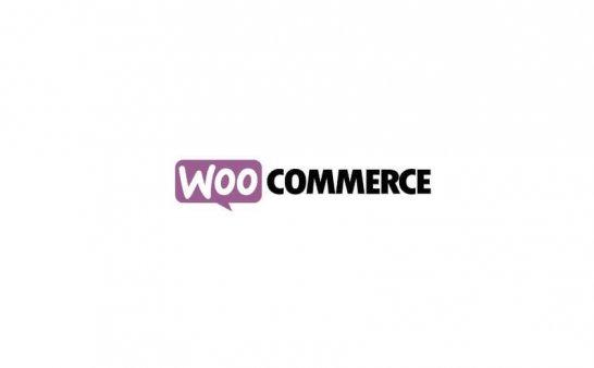 认识您的Woocommerce 电子商务平台